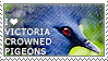 I love Victoria Crowned Pigeons by WishmasterAlchemist