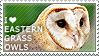 I love Eastern Grass Owls by WishmasterAlchemist