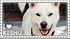 I love Kishu by WishmasterAlchemist
