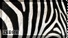 [AP IV] Zebra by WishmasterAlchemist