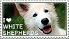 I love White Shepherds by WishmasterAlchemist