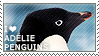 I love Adelie Penguins by WishmasterAlchemist