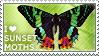 I love Sunset Moths by WishmasterAlchemist