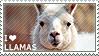 I love Llamas by WishmasterAlchemist