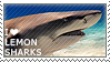 I love Lemon Sharks by WishmasterAlchemist