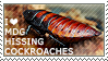 I love Madagascar Hissing Cockroaches by WishmasterAlchemist