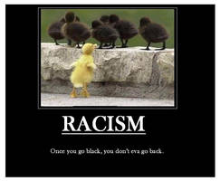 Demotivational racism by Nightsangel666