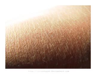 skin. by inContrast