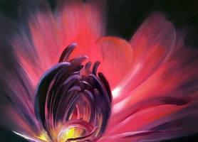 SCARLET FLOWER by VladStelz