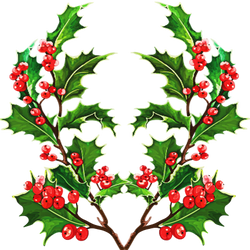 Christmas branches by KmyGraphic