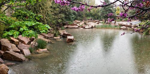 A rainy spring day in Eram by amirskip4life