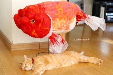 Big fish by demetyoubi