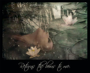 returns the bows to me by Anoukinha
