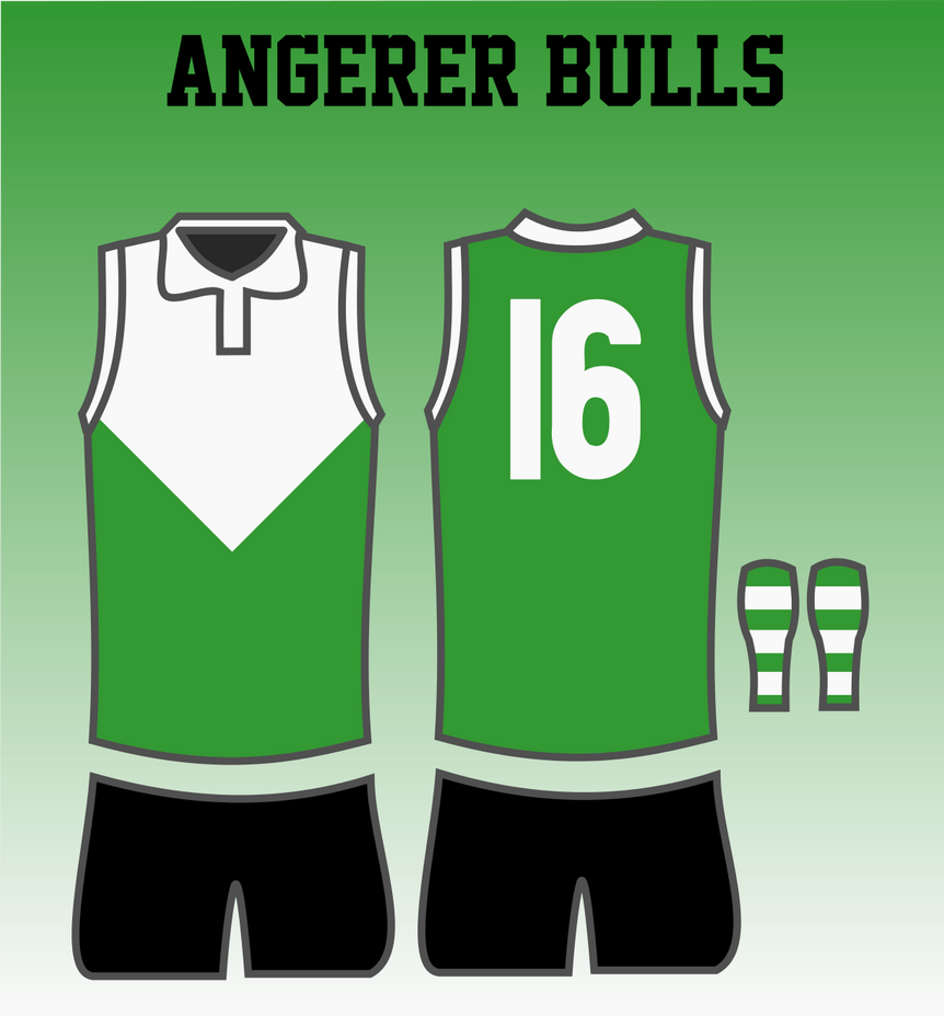 Angerer Bulls 1946 Jumper by TGArtworks