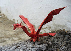 Red Dragon by Figuer