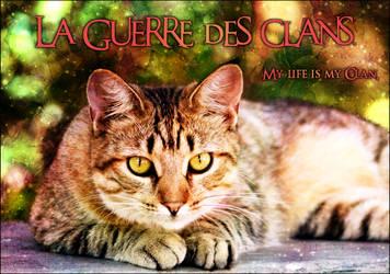 La Guerre des Clans Banner 2. by Pureru