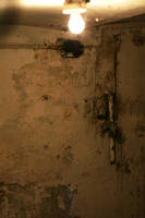 cellar by stocksbyannaforyou