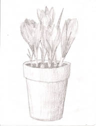 Flower Pot Sketch Attempt by dhmanga186