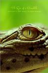 The Eyes of a Crocodile by OmarAziz
