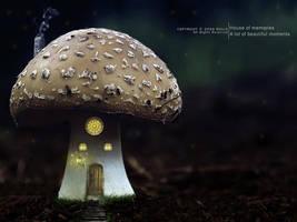 House of memories by OmarAziz