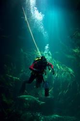 Under the Sea... by Kaddieee