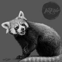 Inktober Day 29: Surprise! by silvercrossfox