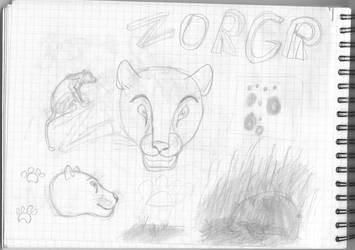 Draft copy number 4 by Zorgren