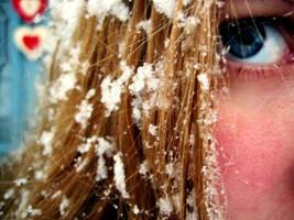 Winter's Best by erinroonifer