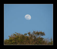 Moon Shot by canology
