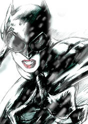 catwomen action by gombez
