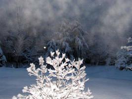 Winter Scenery in Spring by JocelyneR