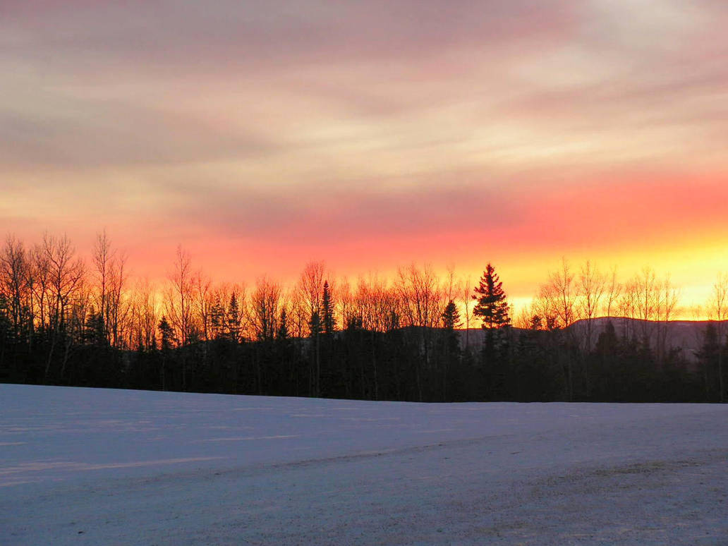 Sunset on a Cold Winter Day by JocelyneR