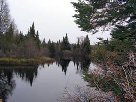 Peaceful Stream in Spring 02 by JocelyneR