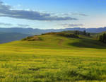 Meadow At The End Of Summer. by JocelyneR