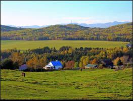 Country Scene in Fall by JocelyneR