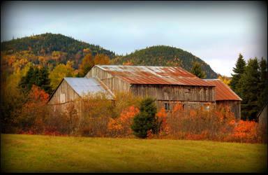 Ancient Barn by JocelyneR