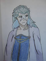 Hyorinmaru colored by killing-innocence