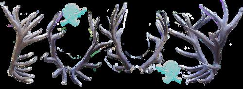 Forest Spirt: Elk antler stock by Lord-FurFur