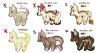 OPEN 3/6 - On Sale Point Adopts by jellyfishadopts