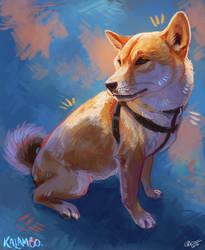 Dog study by kalambo