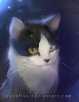 cat oreo by Apofiss