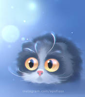 almost scottish fold by Apofiss