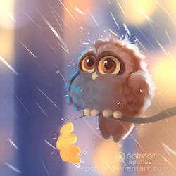 morning shower by Apofiss