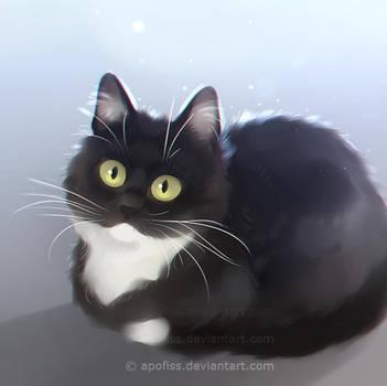 curious zelda by Apofiss