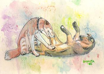 Playful colours by Janaita
