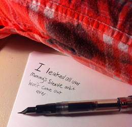 Pen Shaming by AgentBlackBlood