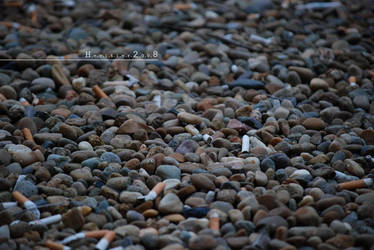 Buds and Stones by HeritieR