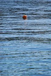 Gravity of Float by HeritieR