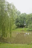parc de Chezine09 by Jules171