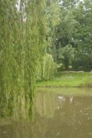 parc de Chezine10 by Jules171